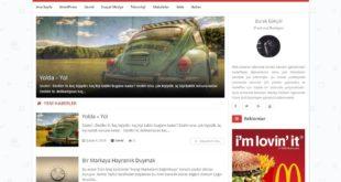 wordpress-hex-blog-temasi